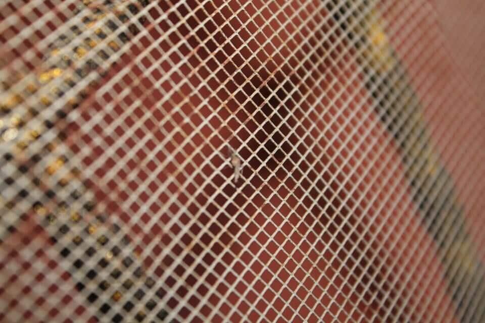 advantage-of-using-a-mosquito-net