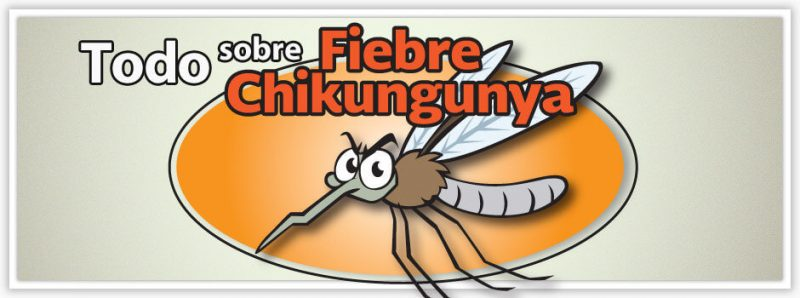 chikungunya-fever-a-condition-that-causes-chronic-consequences